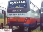 HAMSAH