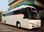 Superbus by Tiga_1