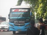 IMG_6958